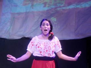 <i>Lucinda y las Flores de la Noche Buena</i>