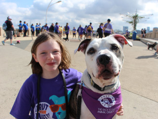SPCA of Texas presents Strut Your Mutt