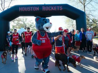 7th Annual Dog Walk