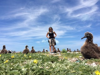 <i>Midway Atoll: The Effect of Plastic Pollution on Birds</i>