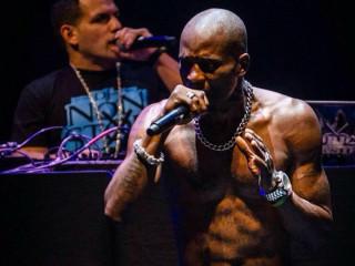 DMX rapper