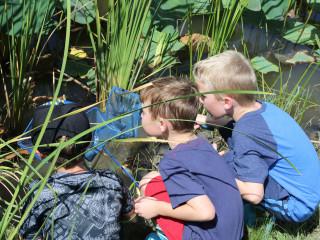 John Bunker Sands Wetland Center presents Family Fun Days
