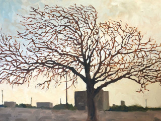 David Borden Art Exhibit
