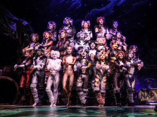 Cast of the national tour of Cats