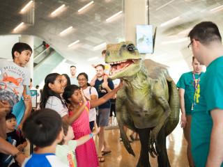 Dino Fest