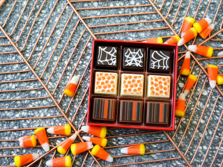 Spooky and Sweet: A Chocolate Tasting Experience