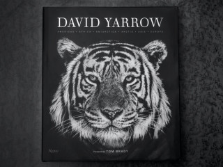 Samuel Lynne Galleries presents David Yarrow Book Launch and Exhibit