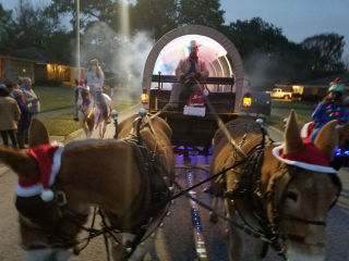 The 21st Annual Deck the Halls Parade