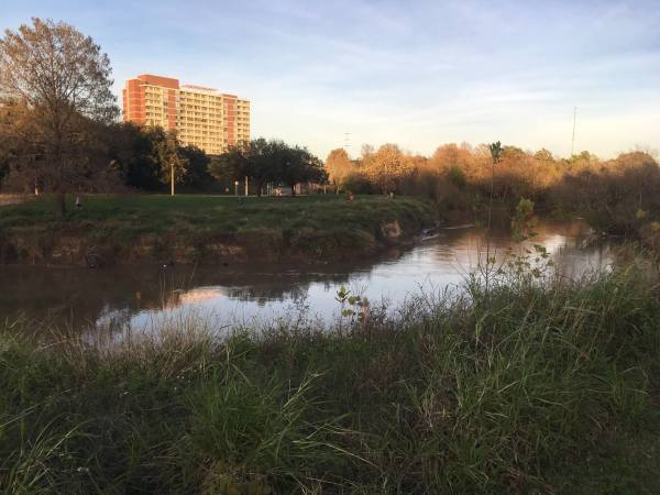 Buffalo Bayou Park pristine scene