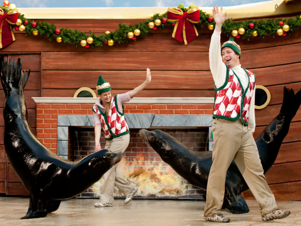 SeaWorld San Antonio presents Christmas Celebration