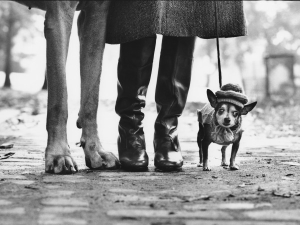 DO NOT USE - Elliott Erwitt