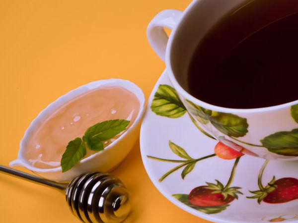 News_Camellia sinensis plant_tea