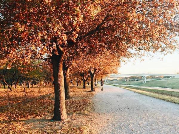 Trinity Trails Fort Worth, jogger, fall foliage, Waterside