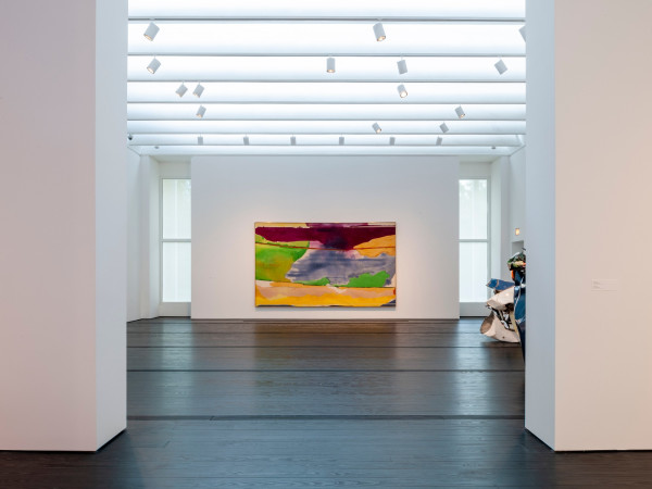Menil Collection Installation view of Helen Frankenthaler, Hybrid Vigor, 1973