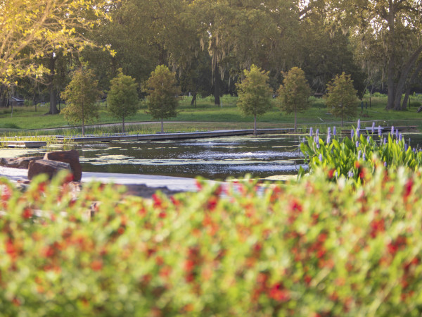 Houston Botanic Garden opening 2020