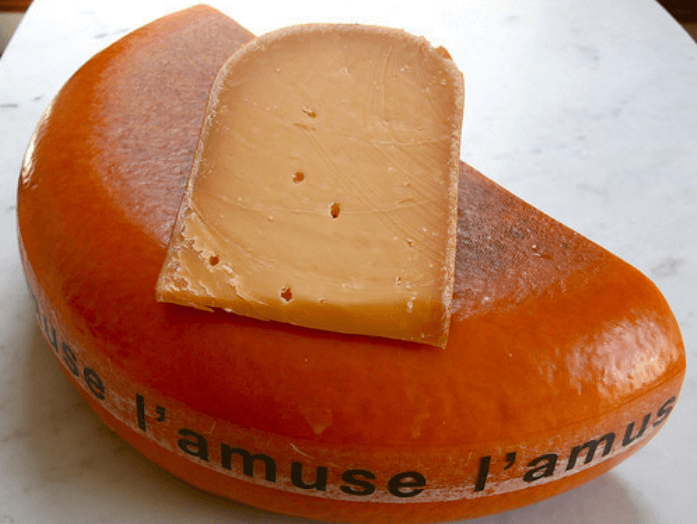 Scardello cheese