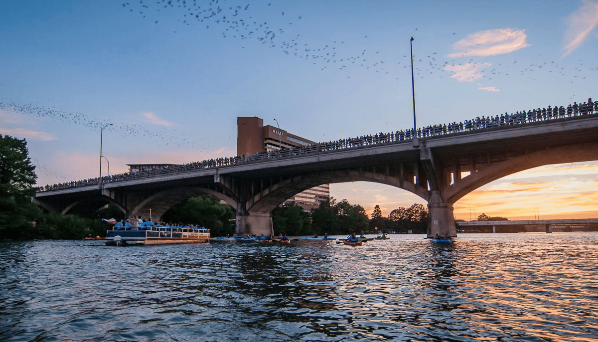 Everything to know about where to watch Austin's famous bats fly
