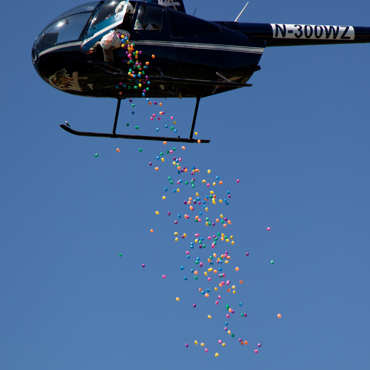 Easter egg drop in Fifth Ward at Lyons Avenue Renaissance Festival March 2015 Helicopter Egg Delievery
