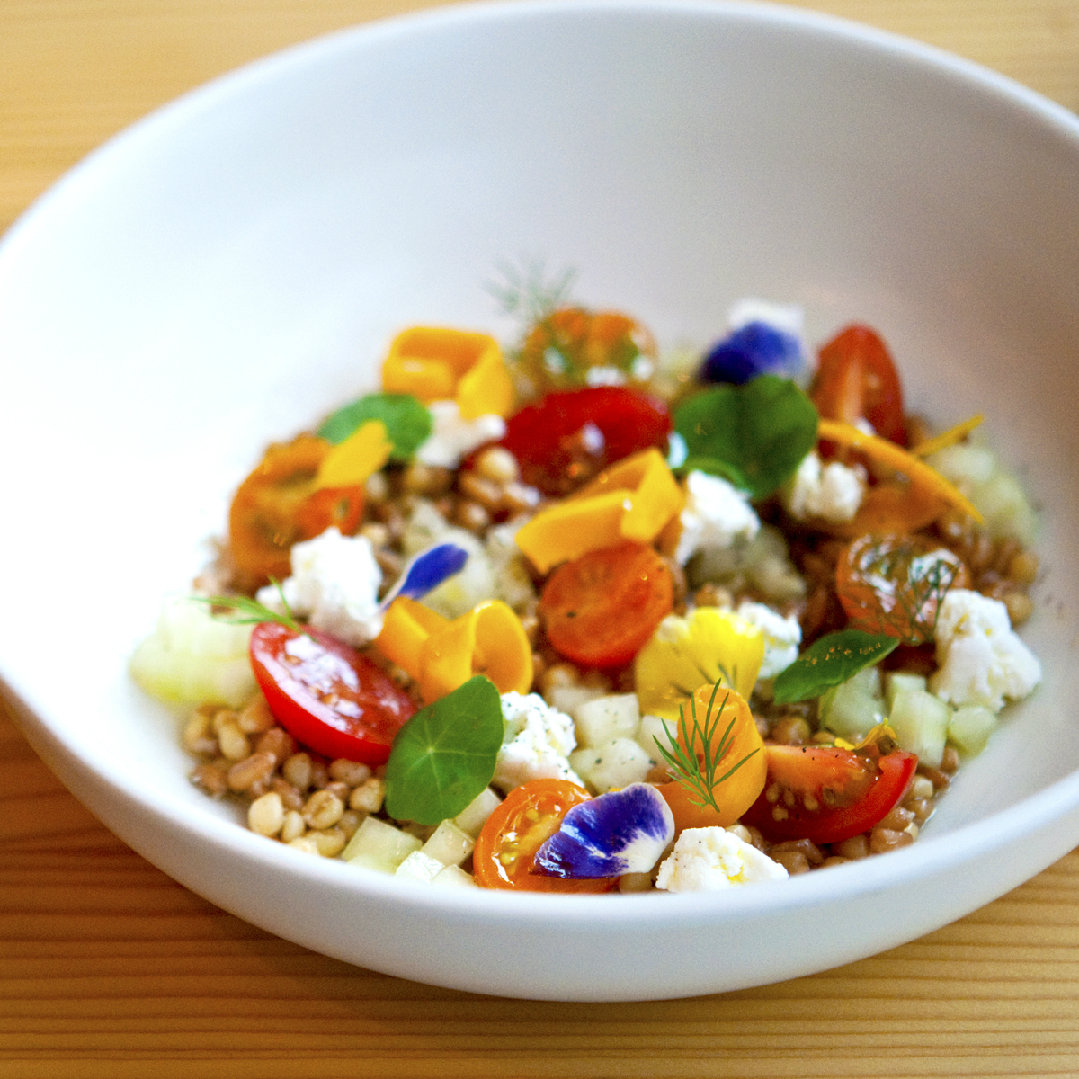 Emmer and Rye 2015 Austin restaurant grain salad