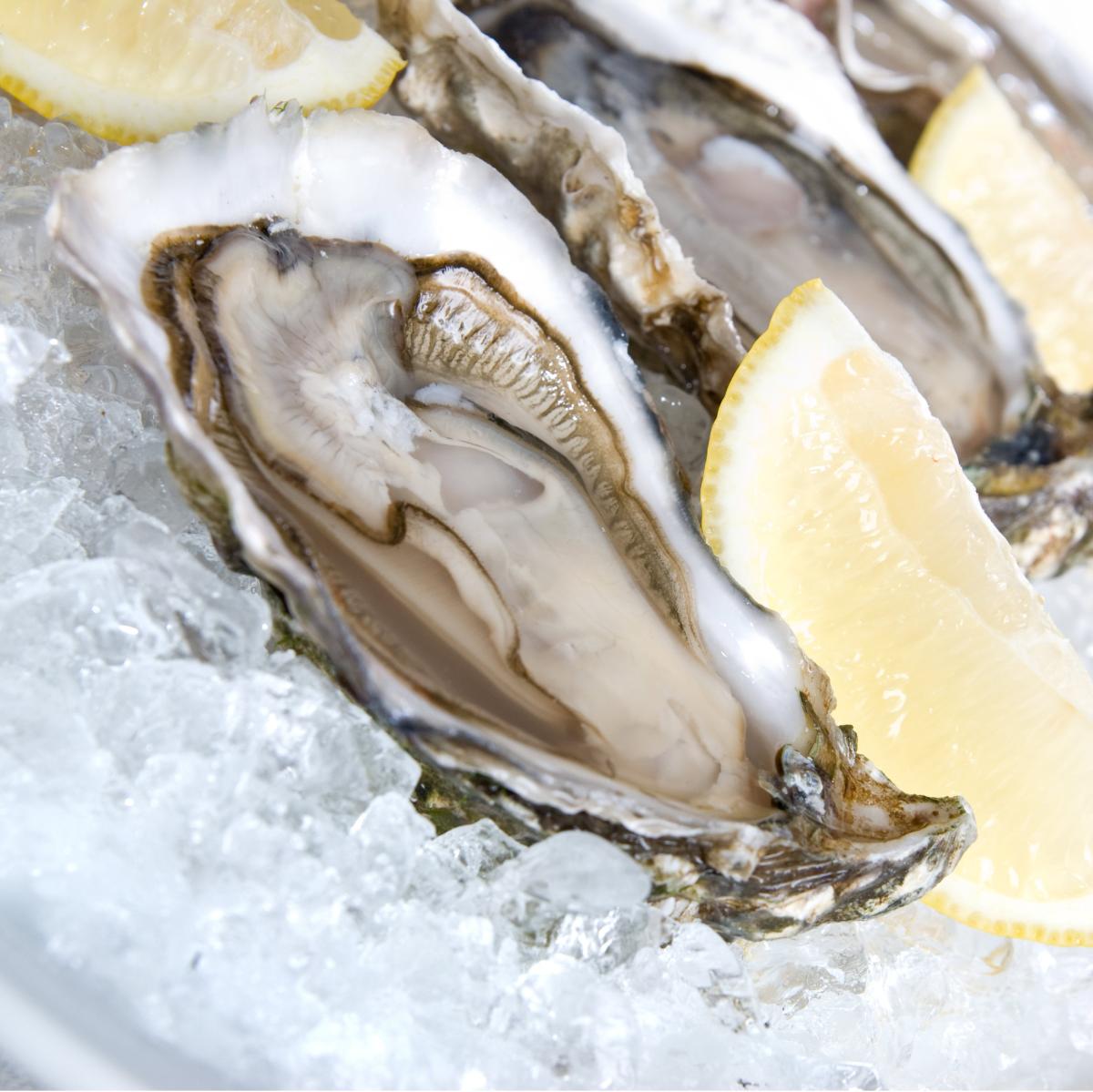 Oysters_lemon_Austin Oyster Festival
