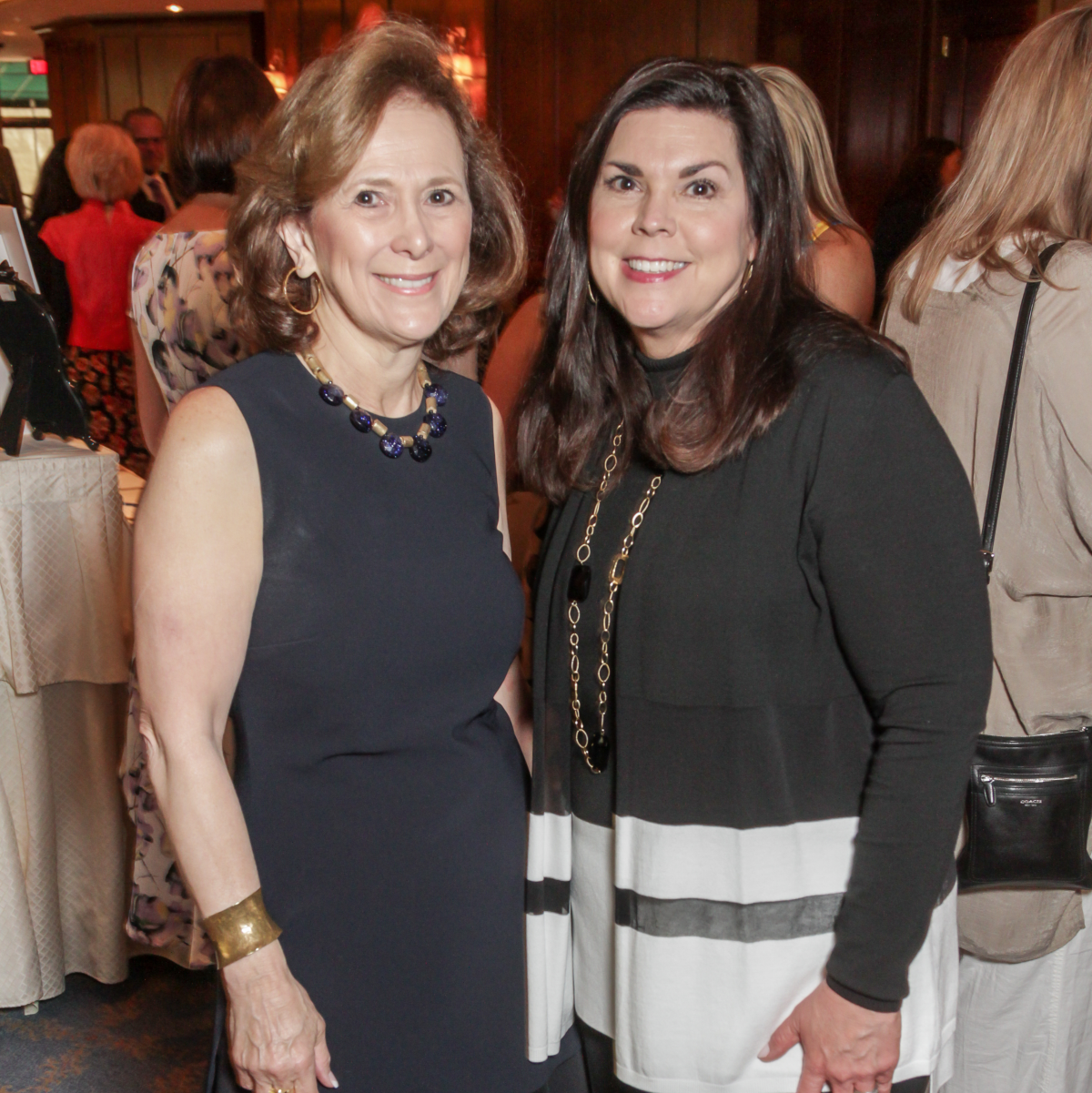 Houston, More Than You Can Imagine luncheon, April 2016, Franelle Rogers and Lesha Elsenbrook