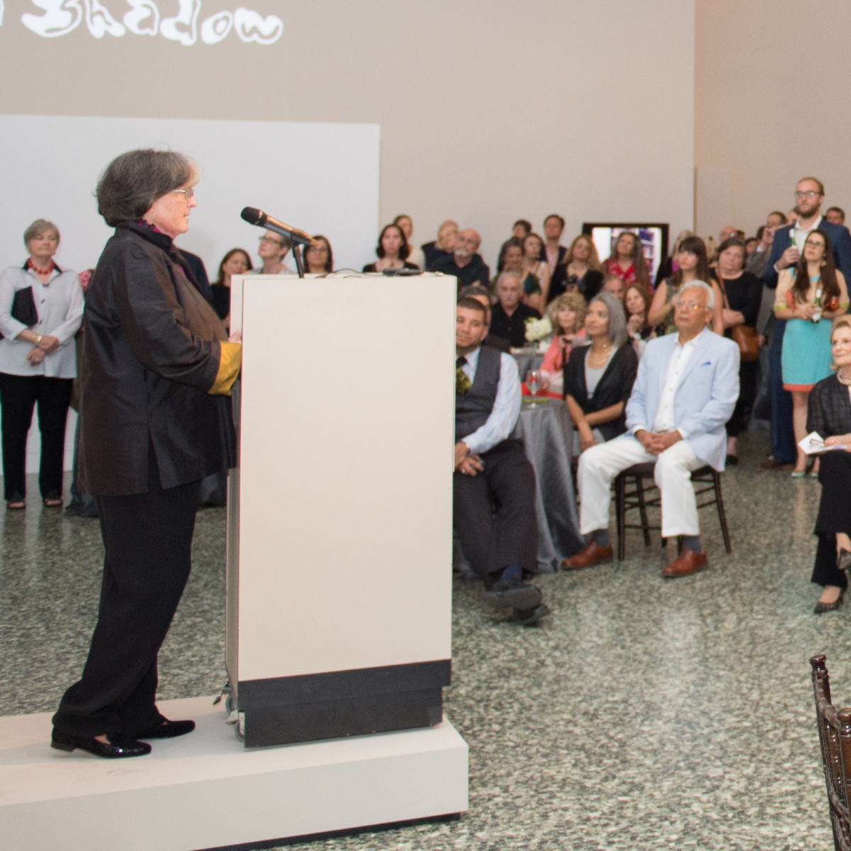 Anne Wilkes Tucker address audience at Museum of Fine Arts