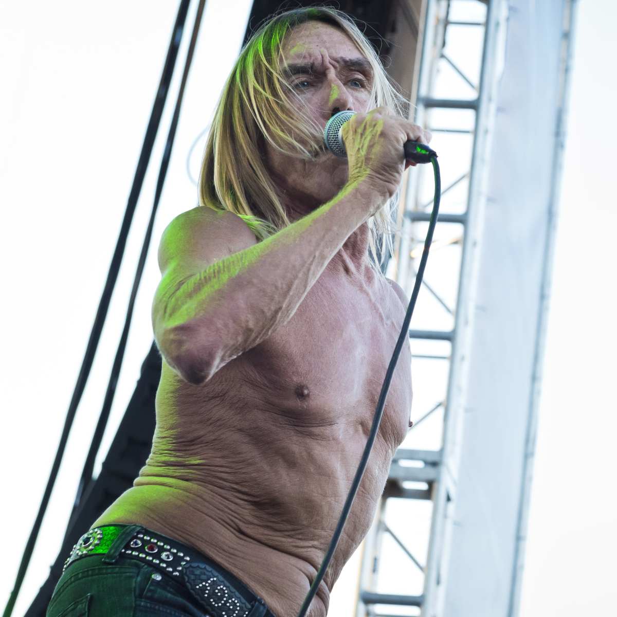 Iggy Pop at Free Press Summer Festival June 2013