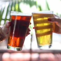 Eberly Cedar Tavern beer glass cheers