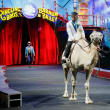 Ringling Bros. wedding,  Mustafa Danguir and Anna Lebedeva,, July 2016