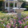 The gardens at The Mermaid & The Dolphin Resort