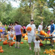 Pumpkin Patch & Fall Festival