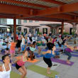 Austin Free Day of Yoga participants outdoors