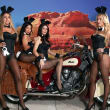 Houston, Playboy and Tao Super Bowl Party, Jan 2017,  Playmates Monica Sims, Hiromi Oshima, Summer Altice and Heather Rae Young
