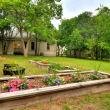Austin home house 2416 S 2nd Street 78704 backyard garden
