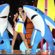 Katy Perry Left Shark Superbowl