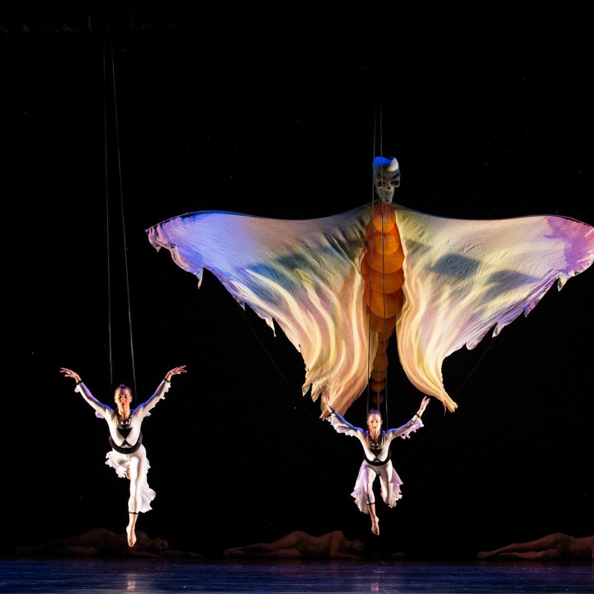 AT&T Performing Arts Center presents Momix: Opus Cactus