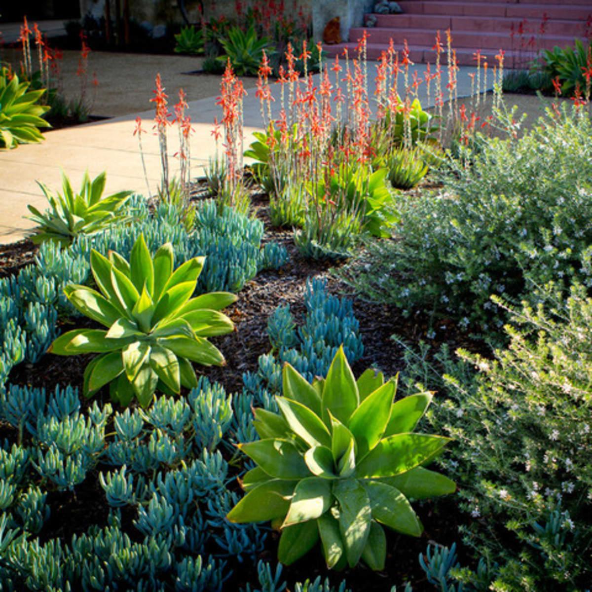 Houzz Garden Design 6