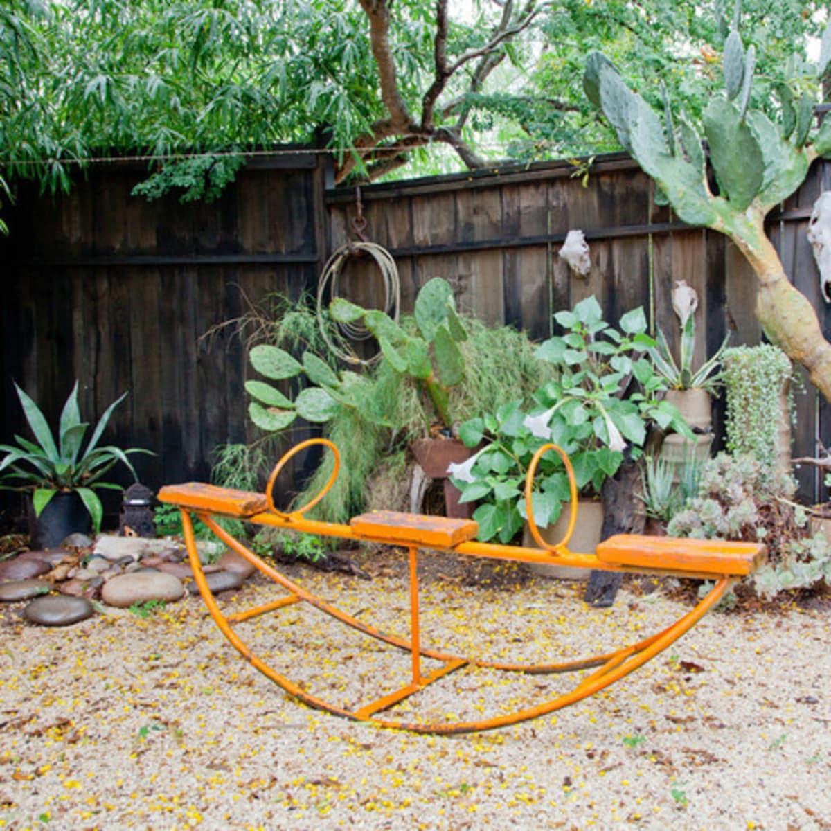 Houzz Texas style cactus garden