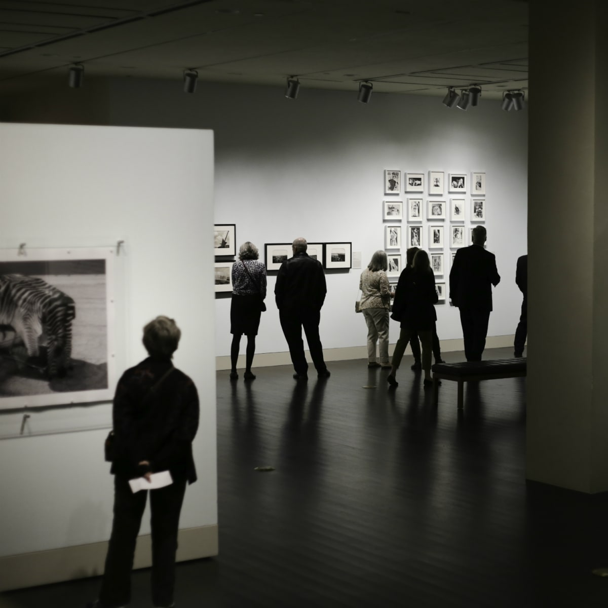 Ampersand Harry Ransom Center spring 2016 exhibitions