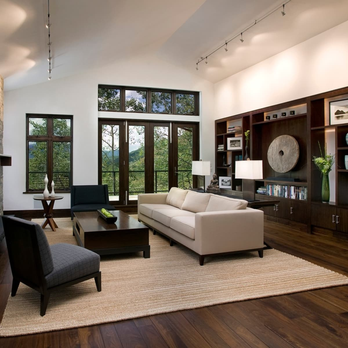 Natural rug in living room