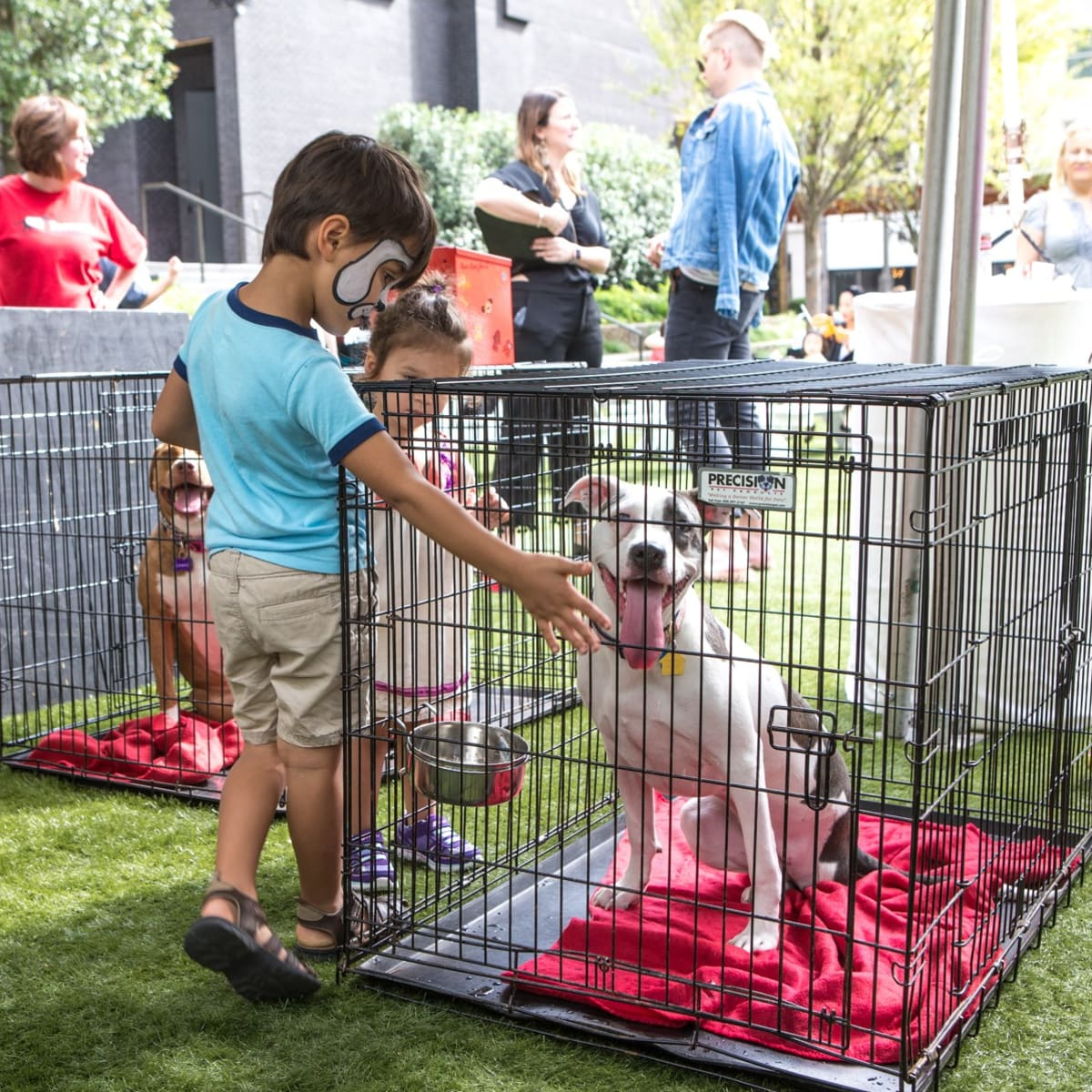 Puppies in the Park 2017