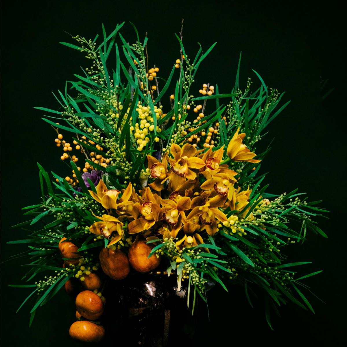 Transplants Floral