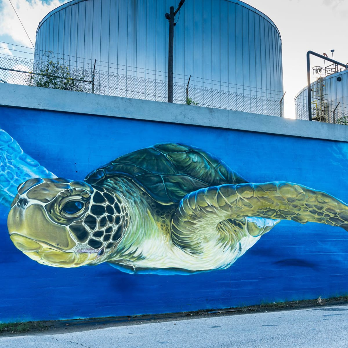 Turtle Soup downtown houston art mural turtle