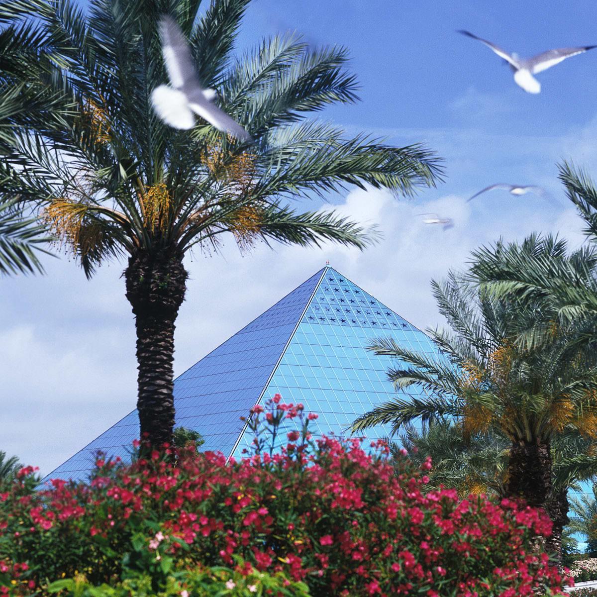 News_Galveston_Moody Gardens_Pyramid