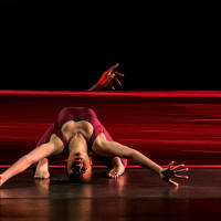 Dallas Black Dance Theatre presents DBDT: Encore! - Rising Excellence
