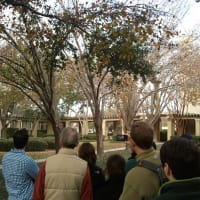 AIA Houston presents Montrose Walking Tour