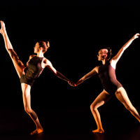 Arts In Motion/In-Step Dance Company presents Danscape 2016