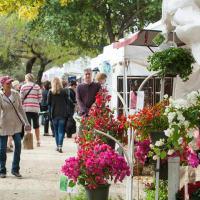 Old Gruene Market Days vendors historic district Texas