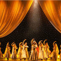 India House and NAACH Houston present Houston's Got Bollywood – The Red Carpet
