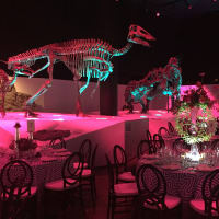 Houston, HMNS Big Bang Ball, March 2017, Morian Hall of Paleontology at HMNS